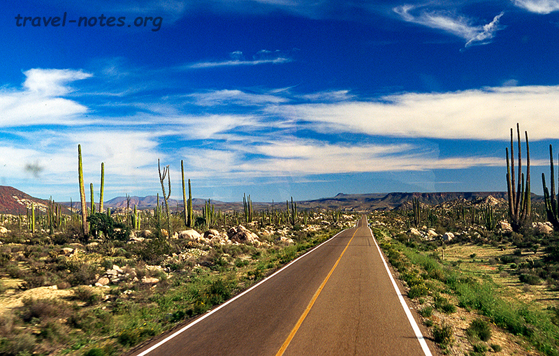 Driving along Route 1, Baja California
